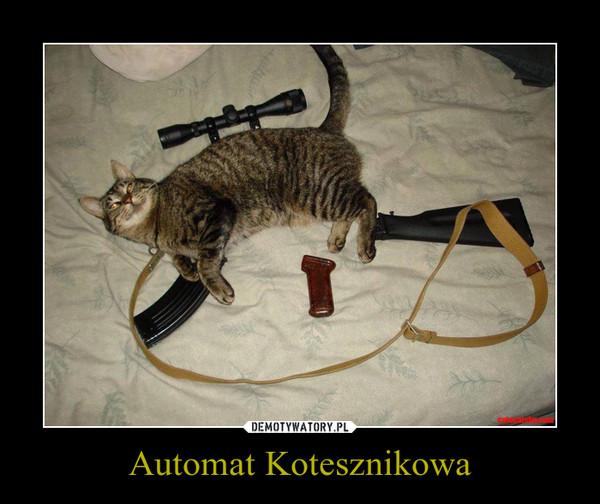Automat Kotesznikowa –