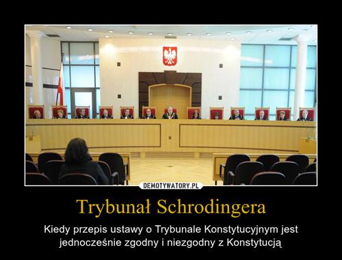 Trybunał Schrodingera