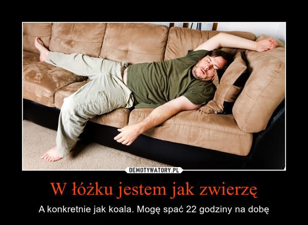 W łóżku jestem jak zwierzę – A konkretnie jak koala. Mogę spać 22 godziny na dobę