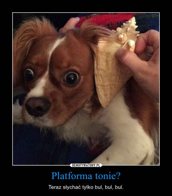 Platforma tonie? – Teraz słychać tylko bul, bul, bul.