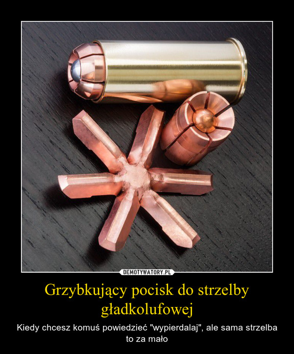 """Grzybkujący pocisk do strzelby gładkolufowej – Kiedy chcesz komuś powiedzieć """"wypierdalaj"""", ale sama strzelba to za mało"""