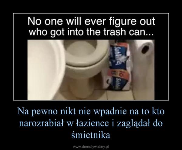 Na pewno nikt nie wpadnie na to kto narozrabiał w łazience i zaglądał do śmietnika –