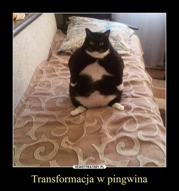 Transformacja w pingwina –