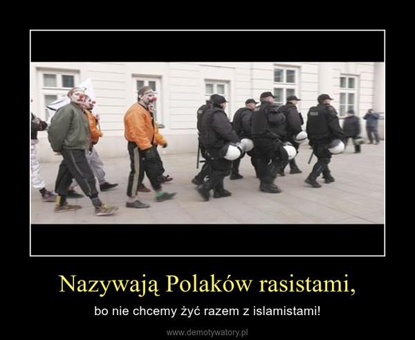 Nazywają Polaków rasistami, – bo nie chcemy żyć razem z islamistami!