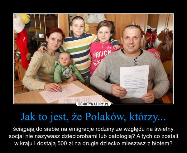 Jak to jest, że Polaków, którzy... – ściągają do siebie na emigracje rodziny ze względu na świetny socjal nie nazywasz dzieciorobami lub patologią? A tych co zostali w kraju i dostają 500 zł na drugie dziecko mieszasz z błotem?