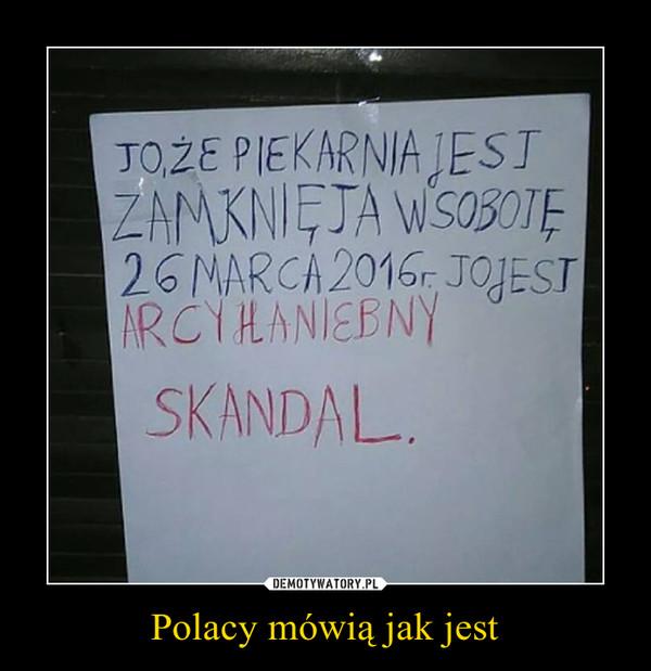Polacy mówią jak jest –
