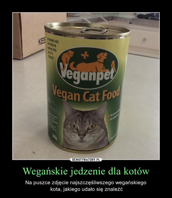 Wegańskie jedzenie dla kotów – Na puszce zdjęcie najszczęśliwszego wegańskiego kota, jakiego udało się znaleźć