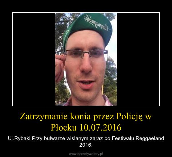 Zatrzymanie konia przez Policję w Płocku 10.07.2016 – Ul.Rybaki Przy bulwarze wiślanym zaraz po Festiwalu Reggaeland 2016.
