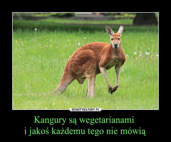 Kangury są wegetarianami i jakoś każdemu tego nie mówią –