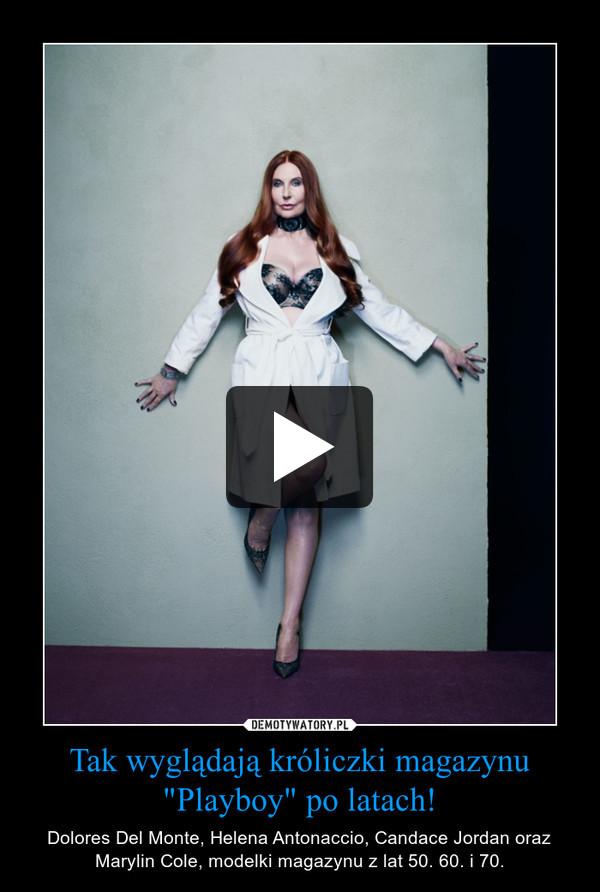 """Tak wyglądają króliczki magazynu """"Playboy"""" po latach! – Dolores Del Monte, Helena Antonaccio, Candace Jordan oraz Marylin Cole, modelki magazynu z lat 50. 60. i 70."""