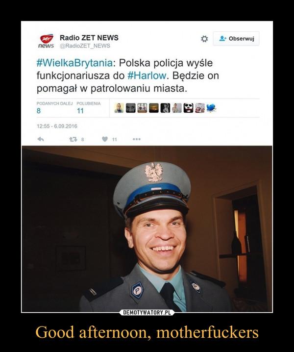 Good afternoon, motherfuckers –  WielkaBrytania: Polska policja wyślefunkcjonariusza do #Harlow. Będzie onpomagał w patrolowaniu miasta.