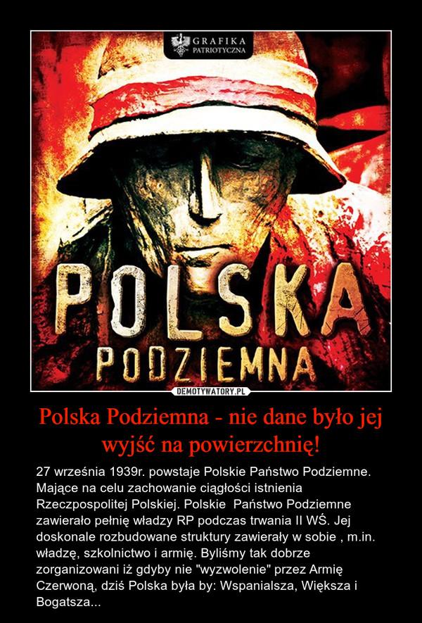 """Polska Podziemna - nie dane było jej wyjść na powierzchnię! – 27 września 1939r. powstaje Polskie Państwo Podziemne. Mające na celu zachowanie ciągłości istnienia Rzeczpospolitej Polskiej. Polskie  Państwo Podziemne zawierało pełnię władzy RP podczas trwania II WŚ. Jej doskonale rozbudowane struktury zawierały w sobie , m.in.  władzę, szkolnictwo i armię. Byliśmy tak dobrze zorganizowani iż gdyby nie """"wyzwolenie"""" przez Armię Czerwoną, dziś Polska była by: Wspanialsza, Większa i Bogatsza..."""