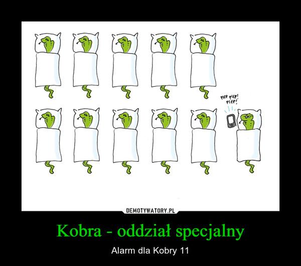 Kobra - oddział specjalny – Alarm dla Kobry 11