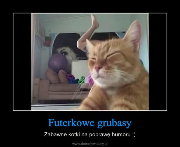 Futerkowe grubasy – Zabawne kotki na poprawę humoru ;)