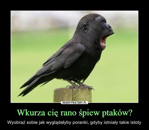 Wkurza cię rano śpiew ptaków? – Wyobraź sobie jak wyglądałyby poranki, gdyby istniały takie istoty