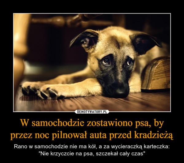 """W samochodzie zostawiono psa, by przez noc pilnował auta przed kradzieżą – Rano w samochodzie nie ma kół, a za wycieraczką karteczka:""""Nie krzyczcie na psa, szczekał cały czas"""""""
