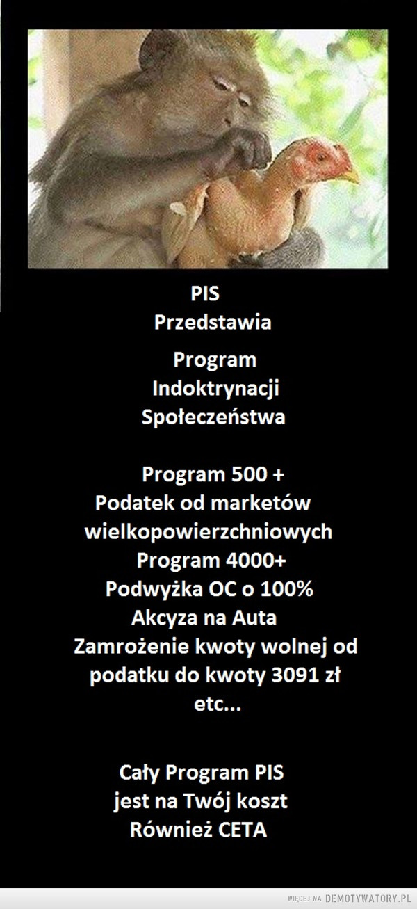 1478881813_dvdyeq_600.jpg