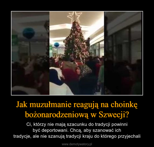 Jak muzułmanie reagują na choinkę bożonarodzeniową w Szwecji? – Ci, którzy nie mają szacunku do tradycji powinni być deportowani. Chcą, aby szanować ich tradycje, ale nie szanują tradycji kraju do którego przyjechali