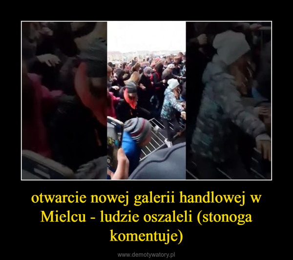 otwarcie nowej galerii handlowej w Mielcu - ludzie oszaleli (stonoga komentuje) –