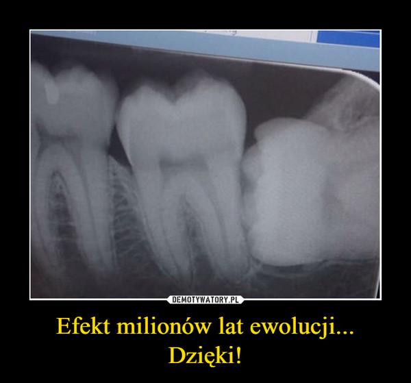 Efekt milionów lat ewolucji...Dzięki! –