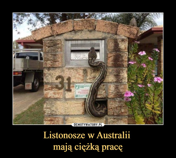 Listonosze w Australii mają ciężką pracę –