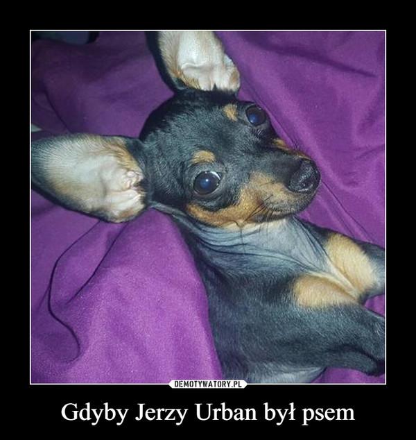 Gdyby Jerzy Urban był psem