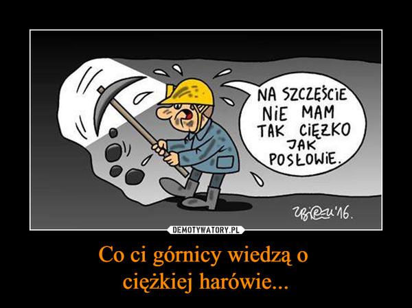 Co ci górnicy wiedzą o ciężkiej harówie... –