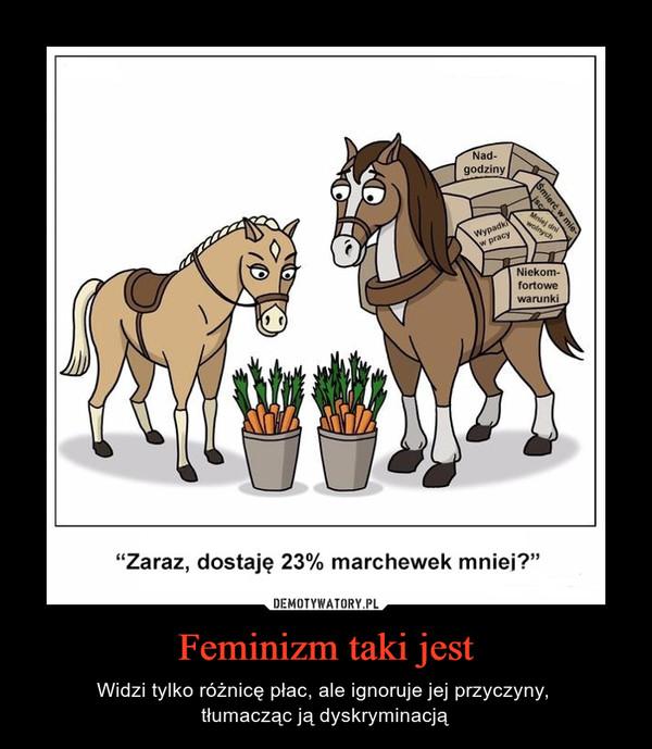 """Feminizm taki jest – Widzi tylko różnicę płac, ale ignoruje jej przyczyny, tłumacząc ją dyskryminacją """"Zaraz, dostaje 23% marchewki mniej?"""""""