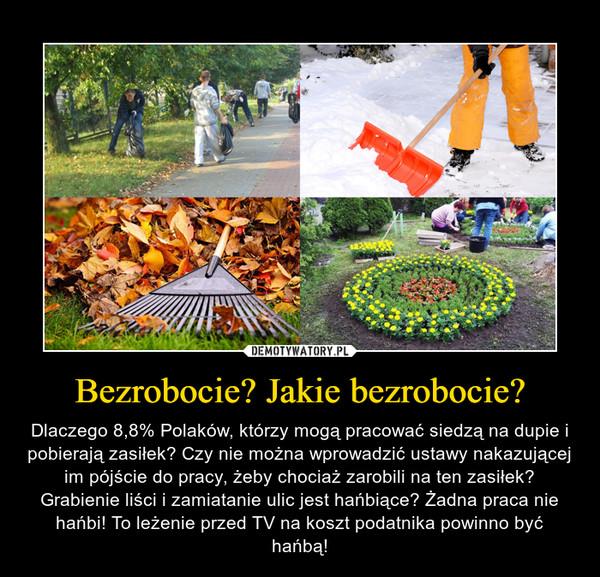 Bezrobocie? Jakie bezrobocie? – Dlaczego 8,8% Polaków, którzy mogą pracować siedzą na dupie i pobierają zasiłek? Czy nie można wprowadzić ustawy nakazującej im pójście do pracy, żeby chociaż zarobili na ten zasiłek? Grabienie liści i zamiatanie ulic jest hańbiące? Żadna praca nie hańbi! To leżenie przed TV na koszt podatnika powinno być hańbą!