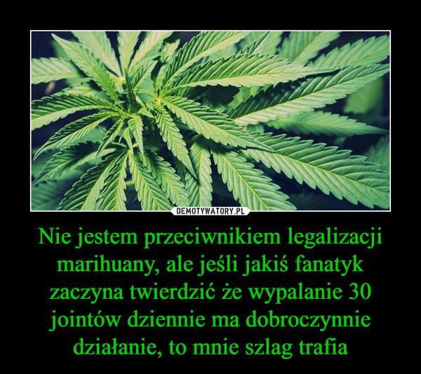 Nie jestem przeciwnikiem legalizacji marihuany, ale jeśli jakiś fanatyk zaczyna twierdzić że wypalanie 30 jointów dziennie ma dobroczynnie działanie, to mnie szlag trafia –