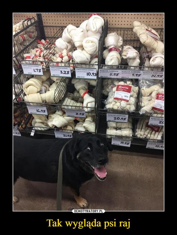 Tak wygląda psi raj –
