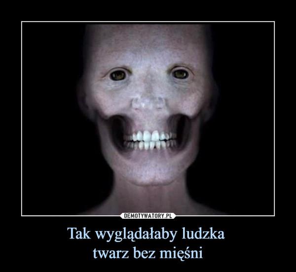 Tak wyglądałaby ludzka twarz bez mięśni –