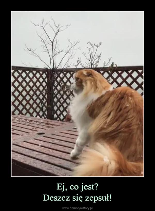 Ej, co jest?Deszcz się zepsuł! –