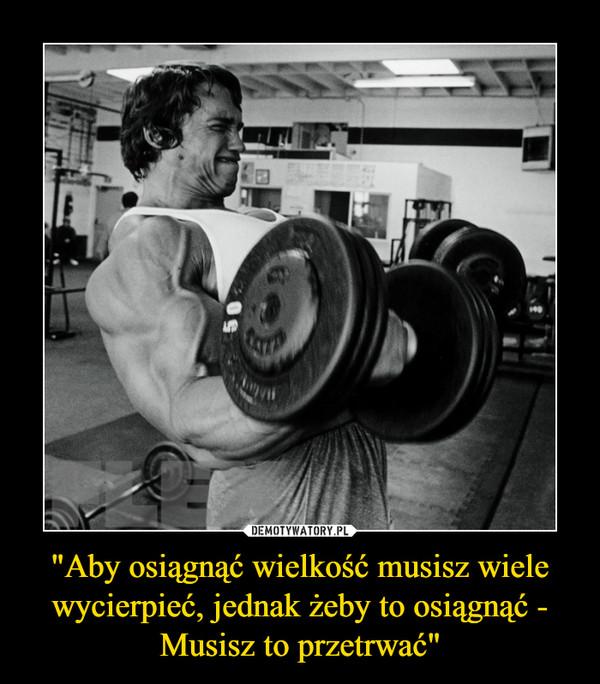 """""""Aby osiągnąć wielkość musisz wiele wycierpieć, jednak żeby to osiągnąć - Musisz to przetrwać"""" –"""