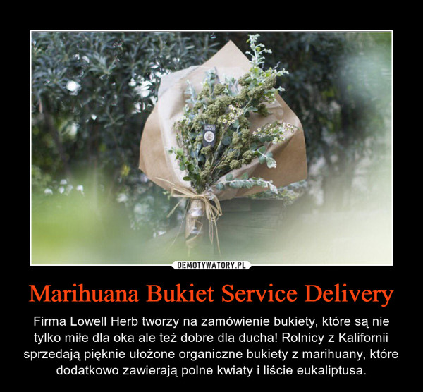 Marihuana Bukiet Service Delivery – Firma Lowell Herb tworzy na zamówienie bukiety, które są nie tylko miłe dla oka ale też dobre dla ducha! Rolnicy z Kalifornii sprzedają pięknie ułożone organiczne bukiety z marihuany, które dodatkowo zawierają polne kwiaty i liście eukaliptusa.