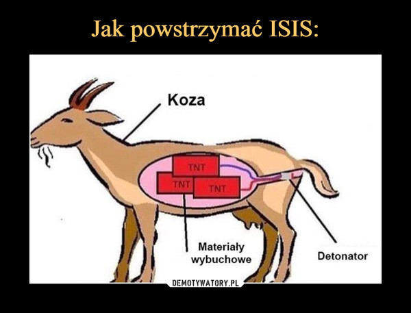 –  koza materiały wybuchowe detonator tnt