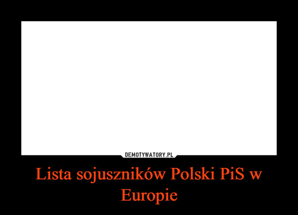 Lista sojuszników Polski PiS w Europie –