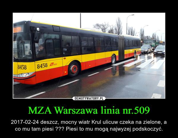 MZA Warszawa linia nr.509 – 2017-02-24 deszcz, mocny wiatr Krul ulicuw czeka na zielone, a co mu tam piesi ??? Piesi to mu mogą najwyzej podskoczyć.