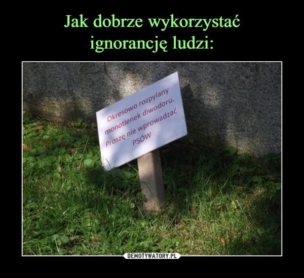 1489591078_mlggfz_600.jpg