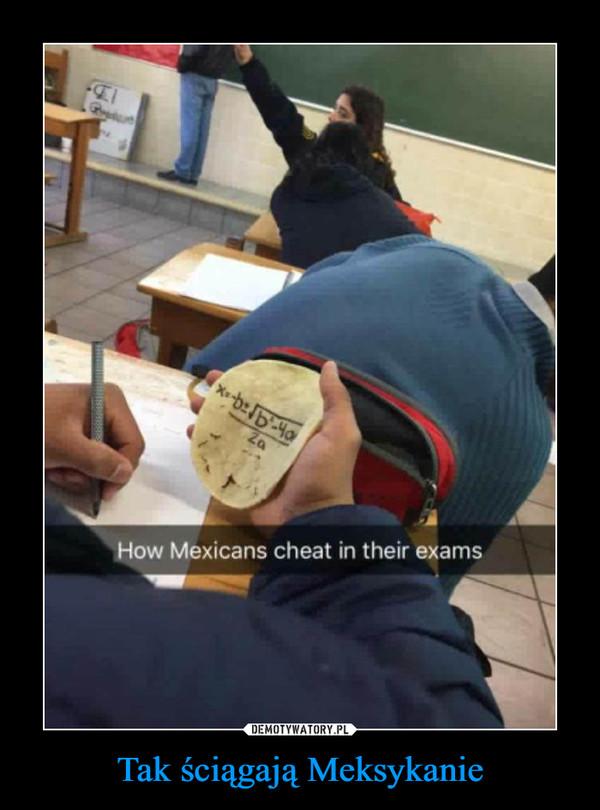 Tak ściągają Meksykanie –