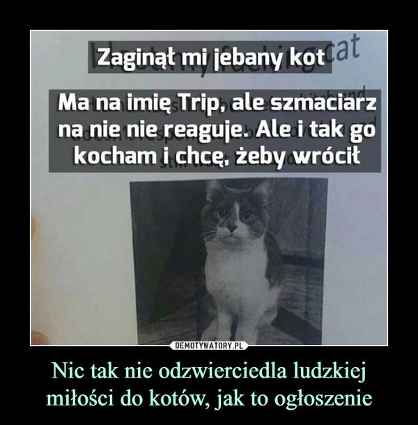 Nic tak nie odzwierciedla ludzkiej miłości do kotów, jak to ogłoszenie –  Zaginął mi jebany kot. Ma na imię Trip, ale szmaciarz na nie nie reaguje, Ale i tak go kocham i chcę, żeby wrócił