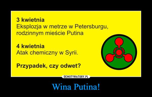 Wina Putina! –