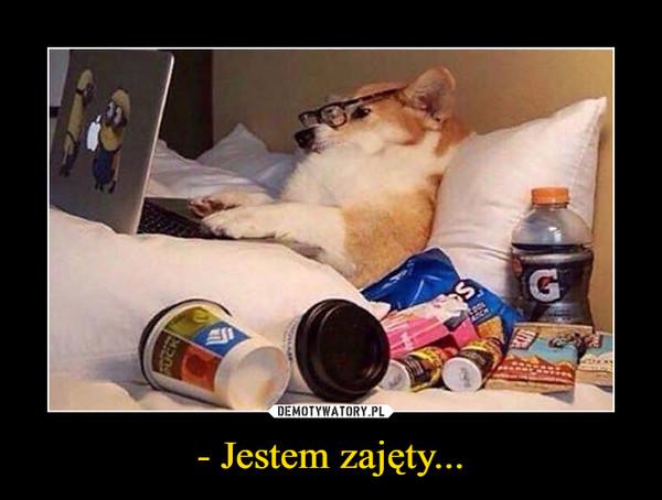 - Jestem zajęty... –
