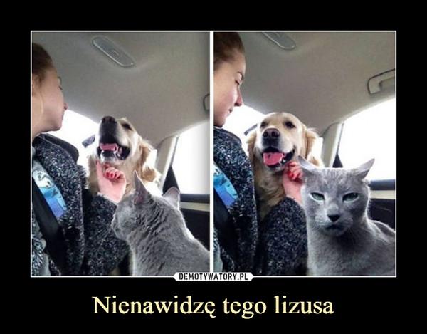 Nienawidzę tego lizusa –