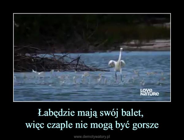 Łabędzie mają swój balet, więc czaple nie mogą być gorsze –