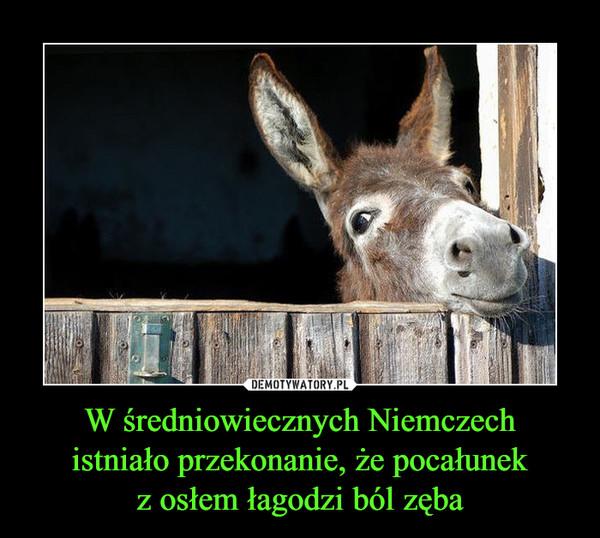 W średniowiecznych Niemczechistniało przekonanie, że pocałunekz osłem łagodzi ból zęba –