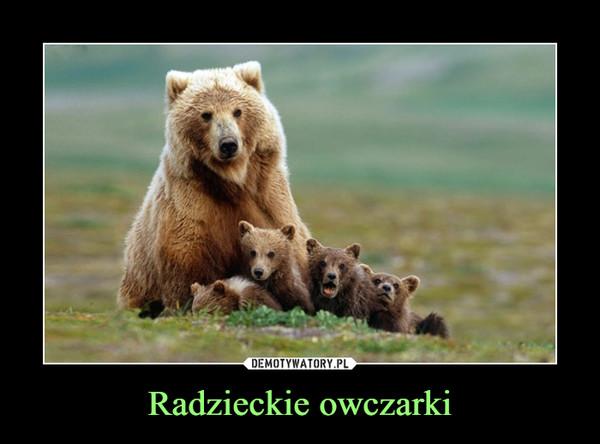 Radzieckie owczarki –