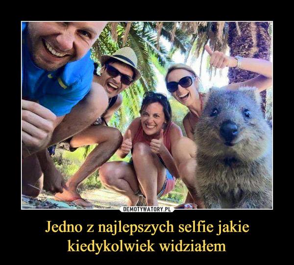 Jedno z najlepszych selfie jakie kiedykolwiek widziałem –