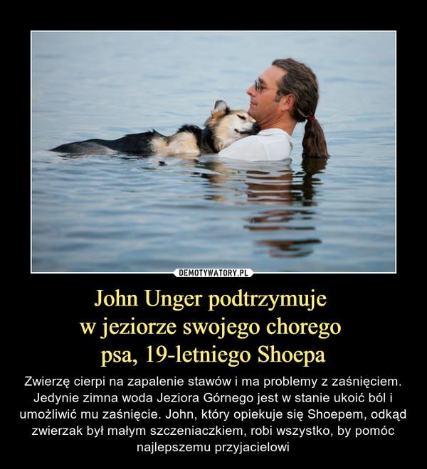 John Unger podtrzymuje w jeziorze swojego chorego psa, 19-letniego Shoepa – Zwierzę cierpi na zapalenie stawów i ma problemy z zaśnięciem. Jedynie zimna woda Jeziora Górnego jest w stanie ukoić ból i umożliwić mu zaśnięcie. John, który opiekuje się Shoepem, odkąd zwierzak był małym szczeniaczkiem, robi wszystko, by pomóc najlepszemu przyjacielowi
