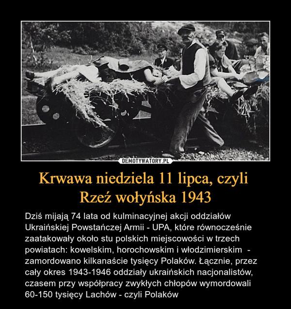 Krwawa niedziela 11 lipca, czyli Rzeź wołyńska 1943 – Dziś mijają 74 lata od kulminacyjnej akcji oddziałów Ukraińskiej Powstańczej Armii - UPA, które równocześnie zaatakowały około stu polskich miejscowości w trzech powiatach: kowelskim, horochowskim i włodzimierskim  - zamordowano kilkanaście tysięcy Polaków. Łącznie, przez cały okres 1943-1946 oddziały ukraińskich nacjonalistów, czasem przy współpracy zwykłych chłopów wymordowali 60-150 tysięcy Lachów - czyli Polaków